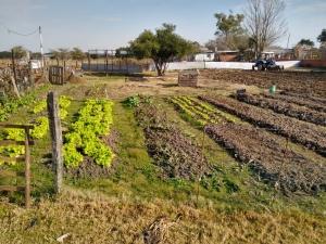 La Secretaría de Producción Municipal entregó más de 180 estuches de semillas a pequeños productores